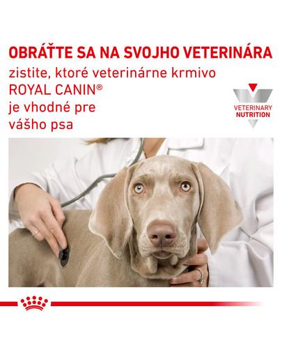 ROYAL CANIN Dog urinary Konzerva 410 g