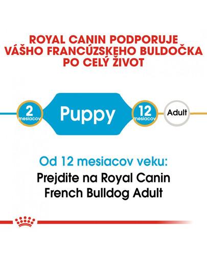 ROYAL CANIN French Bulldog Puppy 1kg granule pre šteňa francúzskeho buldočka