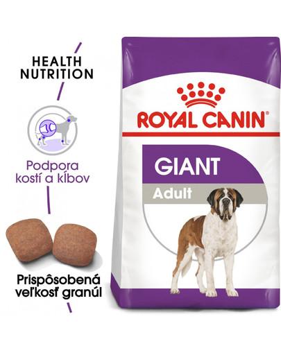 ROYAL CANIN Giant adult 4 kg granuly pre dospelé obrie psy