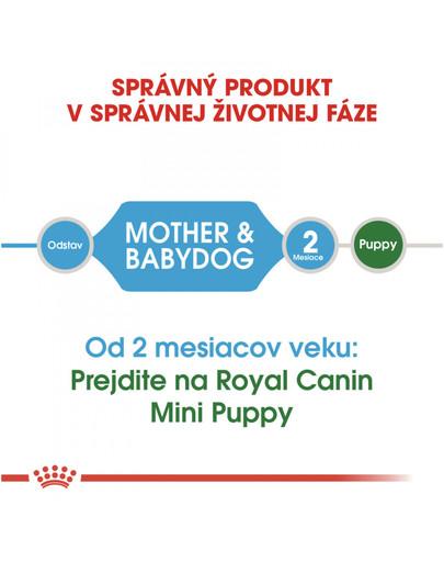 ROYAL CANIN Mini starter mother & babydog 3 kg granule pre brezivé alebo dojčiace suky a šteňatá