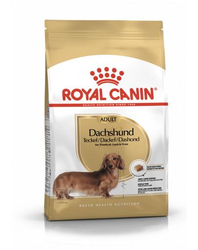ROYAL CANIN Dachshund adult 500g granule pre dospelého jazvečíka