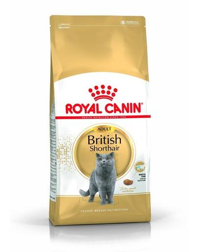 ROYAL CANIN British Shorthair Adult 4kg granule pre britské krátkosrsté mačky